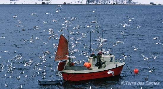 Climat-oceanique-polaire-hiver-Norvege