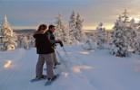 Randonnée en raquettes près de Kiruna, laponie suédoise