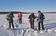 Randonnée raquettes à la journée, kiruna, laponie suédoise