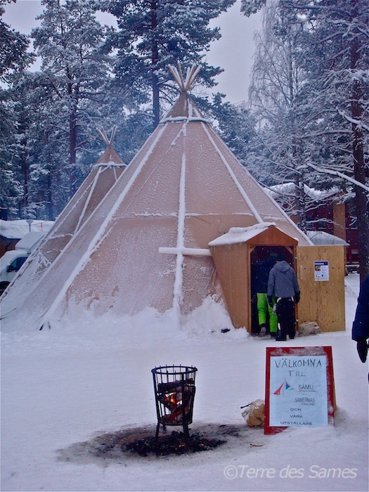 Marché d'hiver en Laponie suédoise avec Terre des Sames