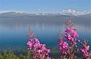 Randonnée en Laponie suédoise, Abisko