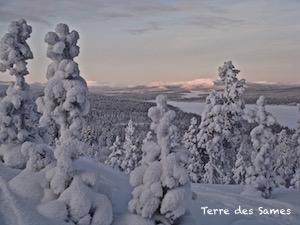 Hiver Laponie Suède Randonnée