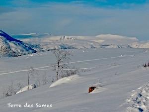 Laponie randonnée hiver Kiruna