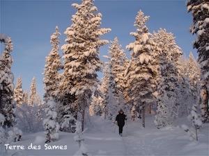 Randonnée hiver Laponie Suède Kiruna