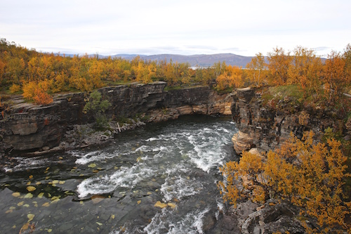 Canyon d'Abisko en automne