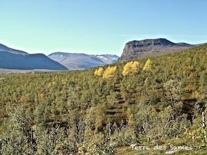 Randonnée Laponie Suède