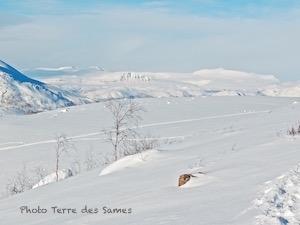 Randonnée raquettes Laponie Abisko Kiruna