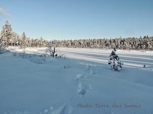 En Laponie, près de Kiruna