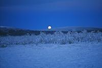 Lever de lune, Kiruna, Laponie suédoise, Sapmi