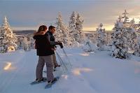 Randonnée raquettes, Kiruna, Laponie suédoise, Sapmi
